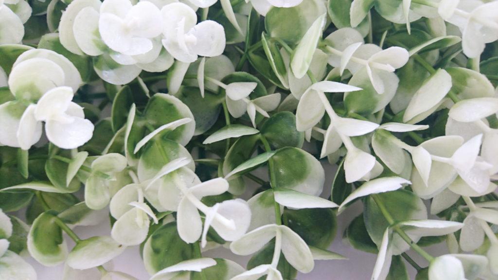 プミラ(ホワイト)BLF-03
