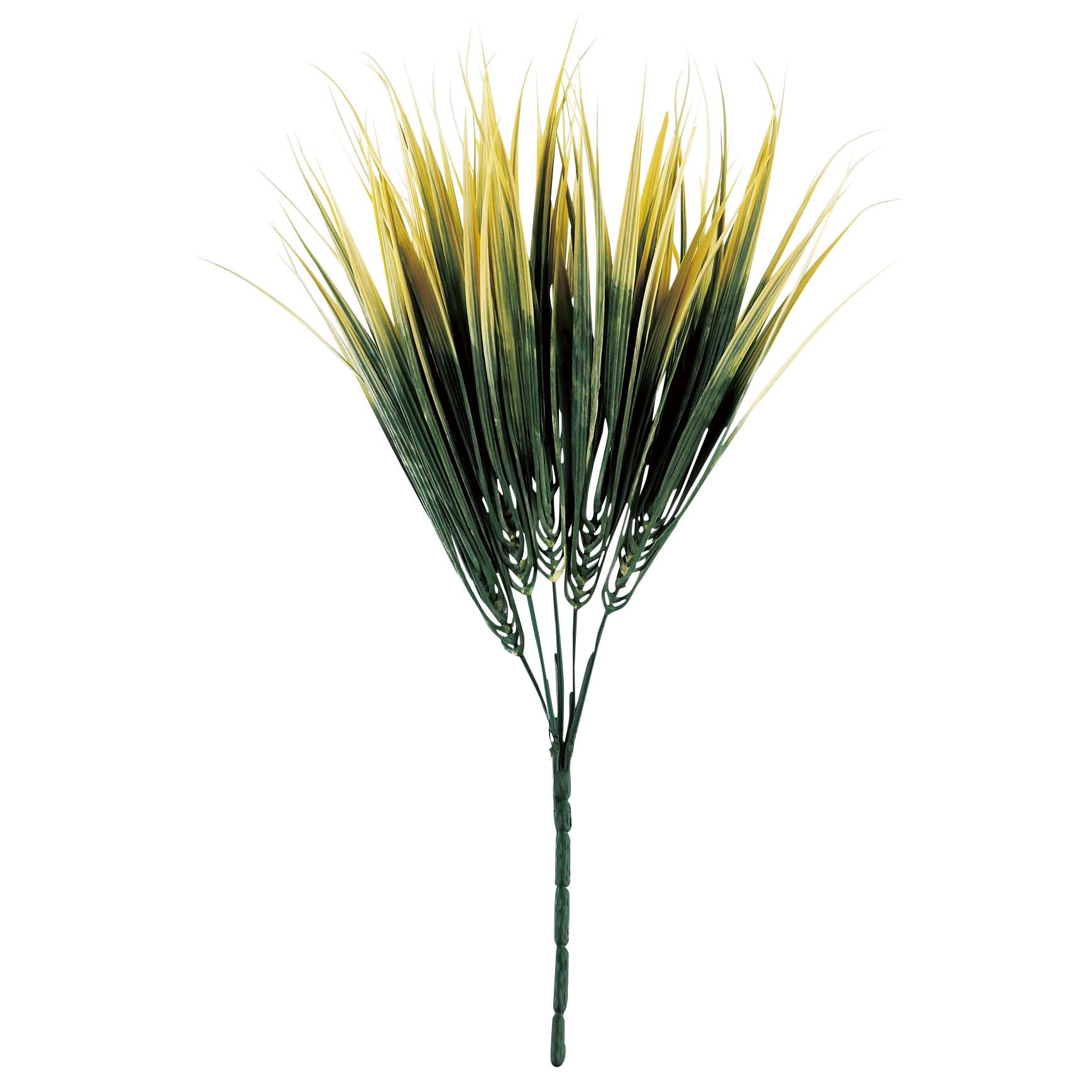 グリーンリーフ・フウチ草(黄) -LF29