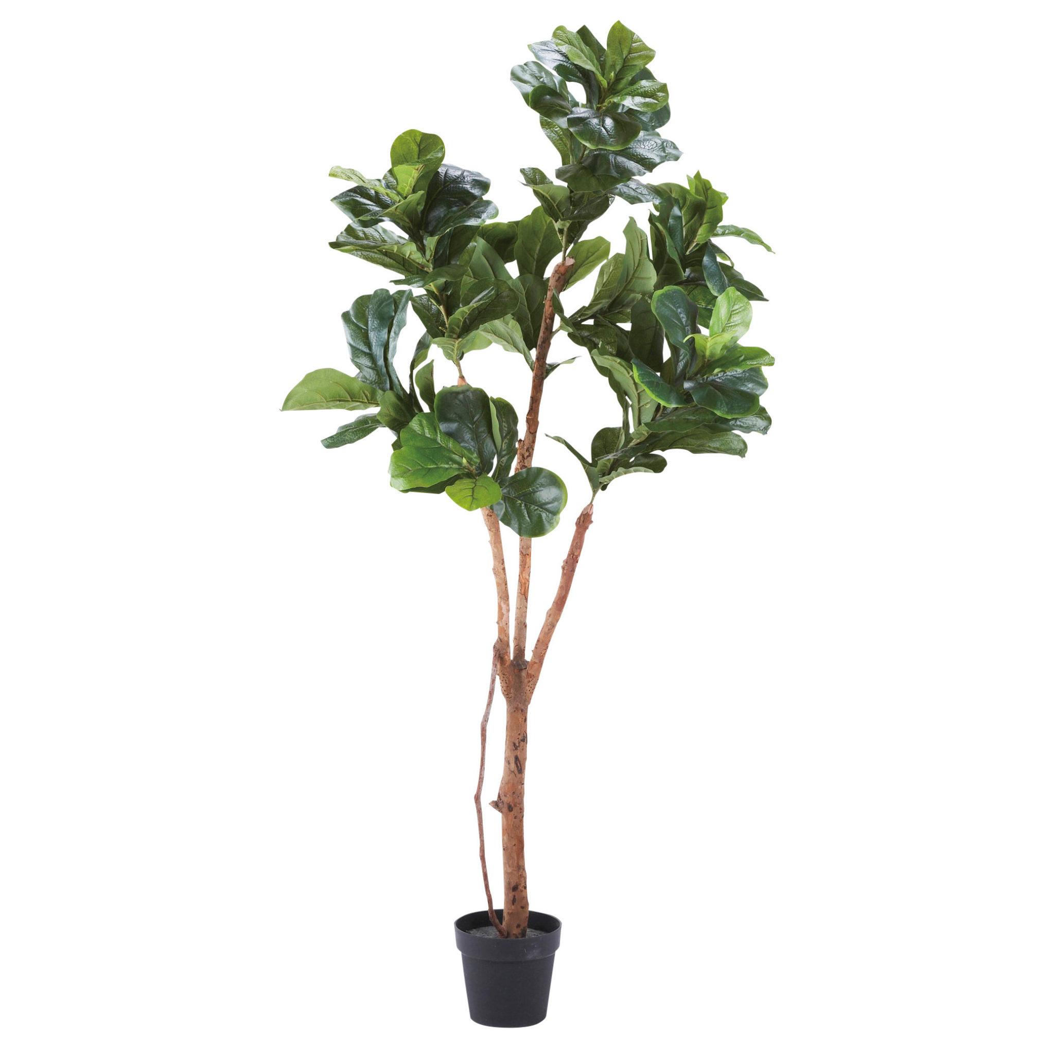 人工観葉植物・カシワバゴム-WD-08