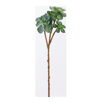 フェイクグリーン・サキュレント(緑)YJ-18007