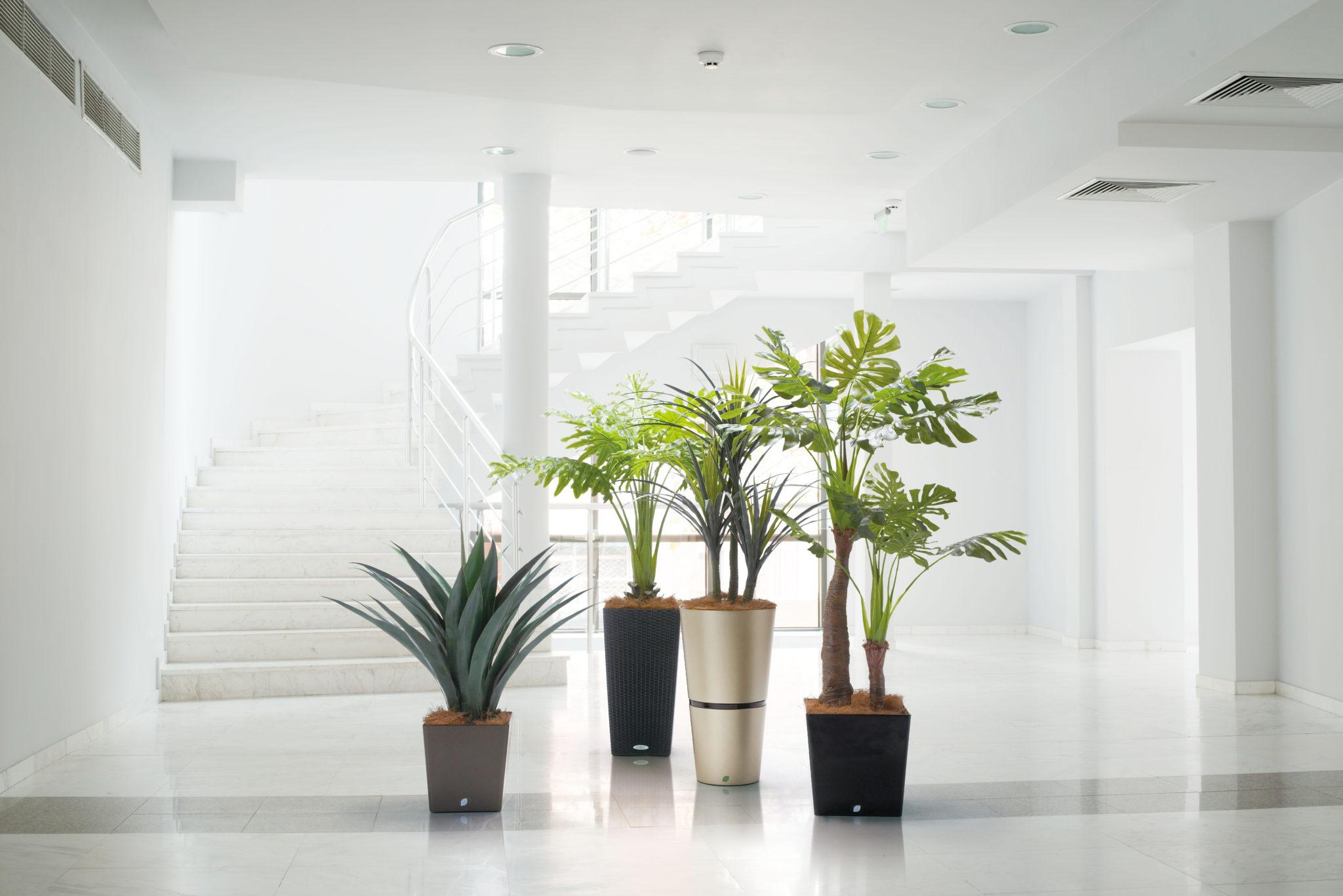 植木鉢(POT)