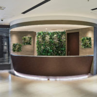 イミテーショングリーン受付-レセプションの壁の施工例_after
