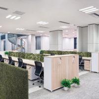 イミテーショングリーン事務所 - ワークスペースの施工例_after