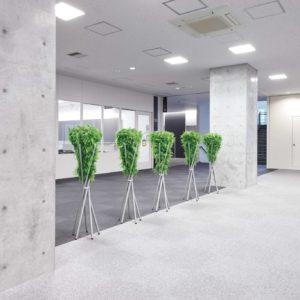 学校の施工例 - 廊下_after